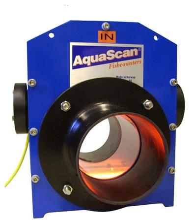 Счетчик рыбы Aquascan CSE 1600-3500
