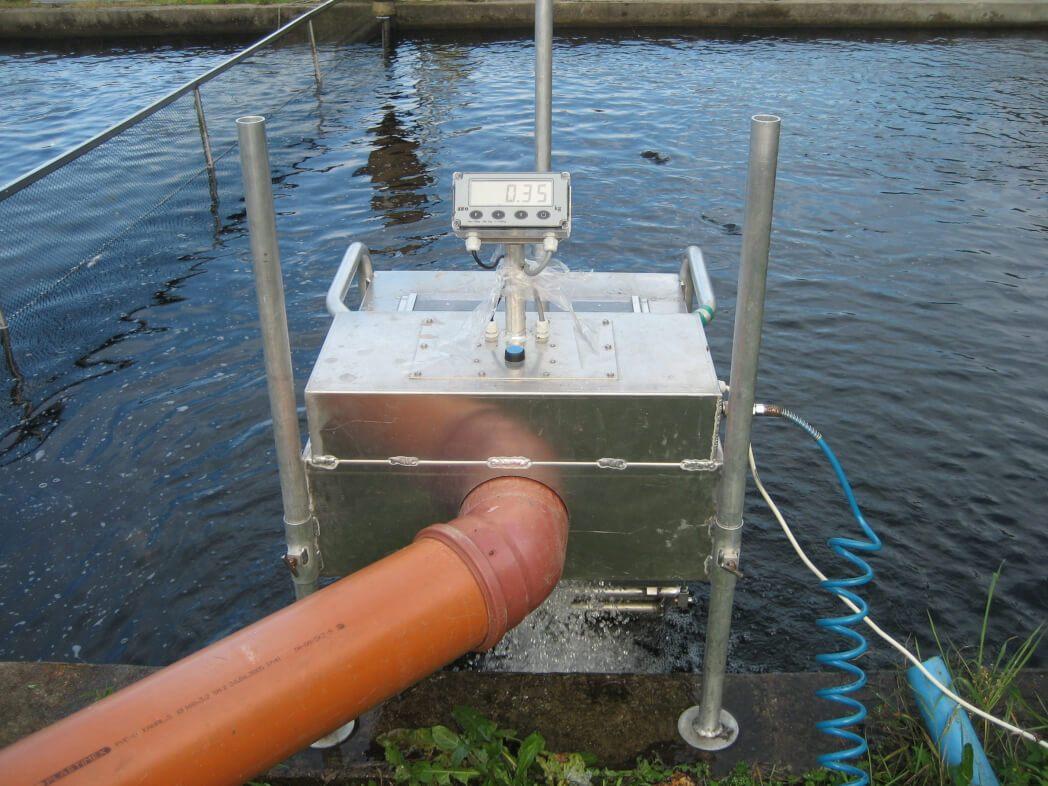 Весы для взвешивания живой рыбы Scale Fish.