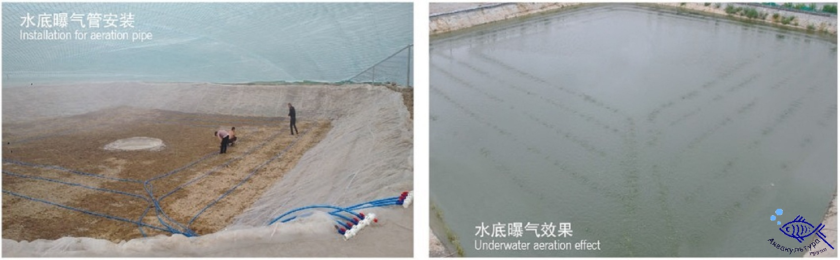 Воздуходувки BQ, Китай
