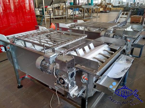 Глазуровочная машина конвейерного типа