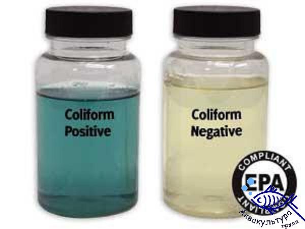 Тест для определения бактерий в воде