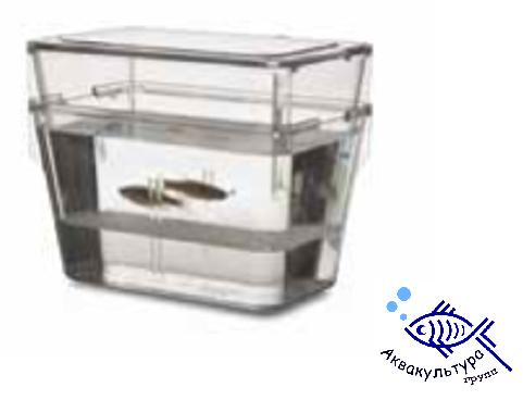 Резервуар для разведения рыб виварий